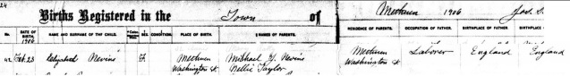 Cropped Birth Record of Elizabeth Nevins 1906